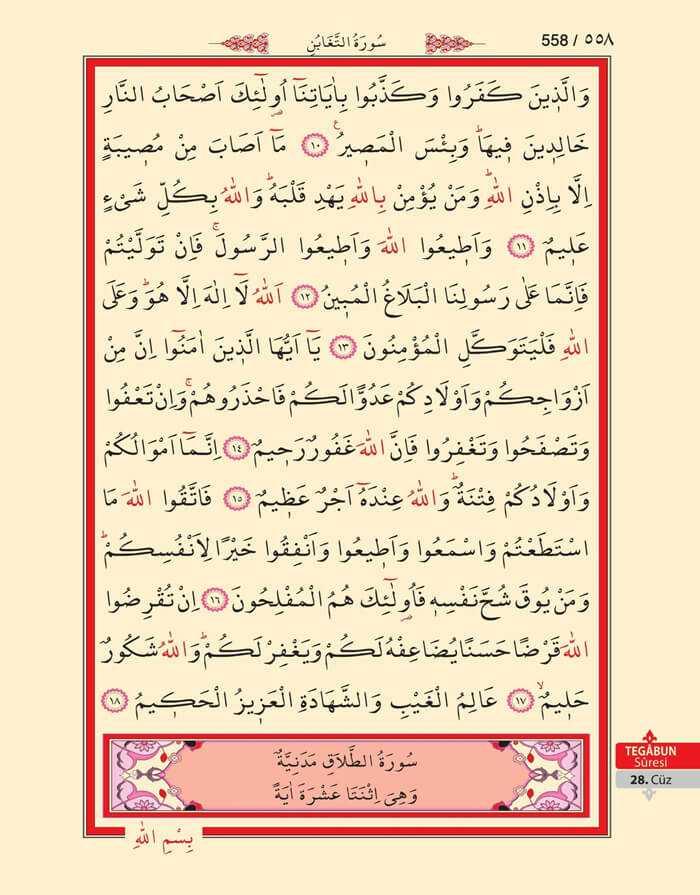 Tegabun Suresi - 556.Sayfa - 28. Cüzün 3. Hizbi